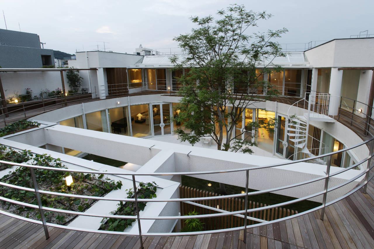 House Like a Museum by Edward Suzuki Associates-04