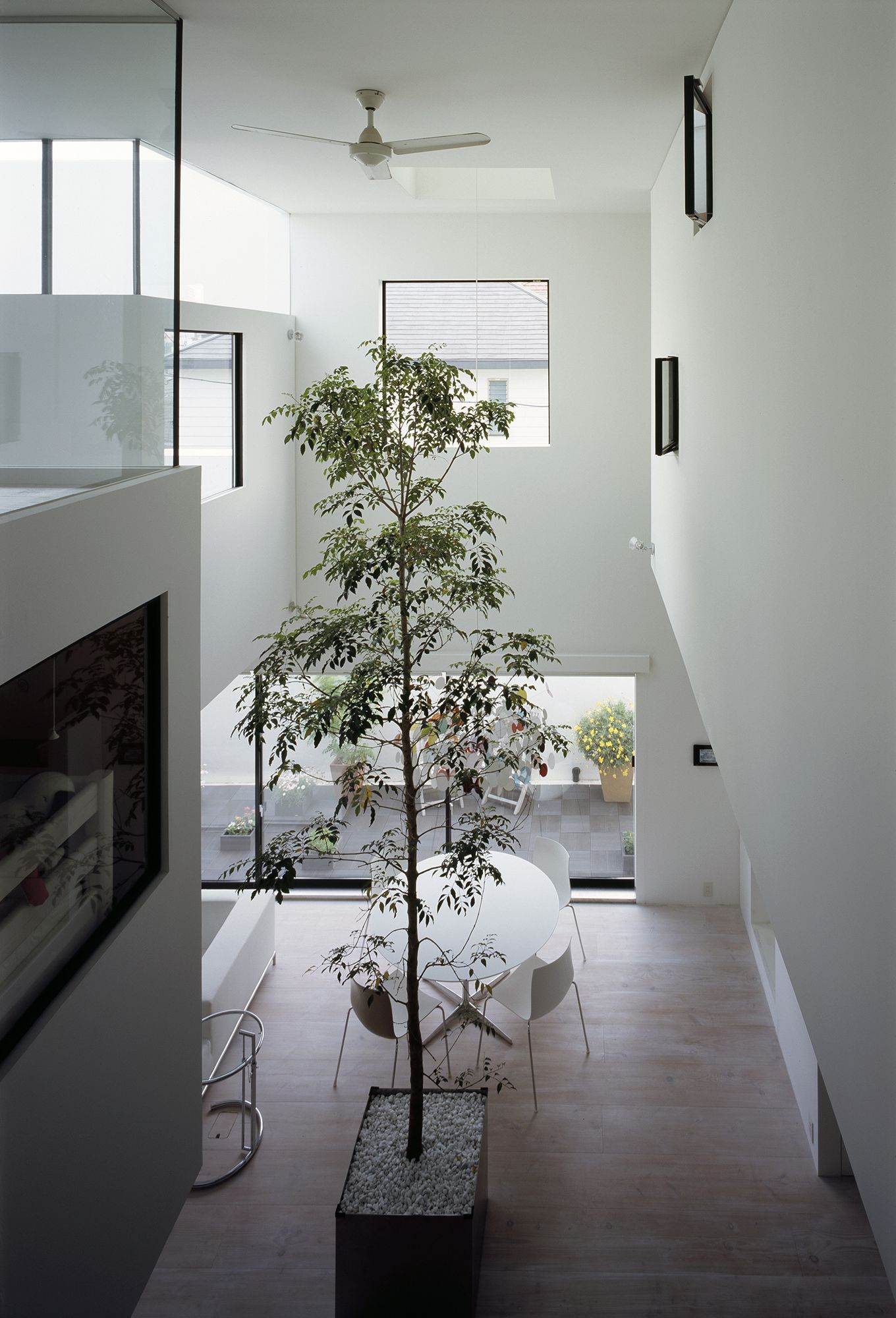 016_tree in the living room