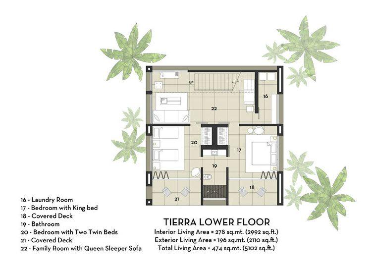 Black-Beauty-Tierra-21