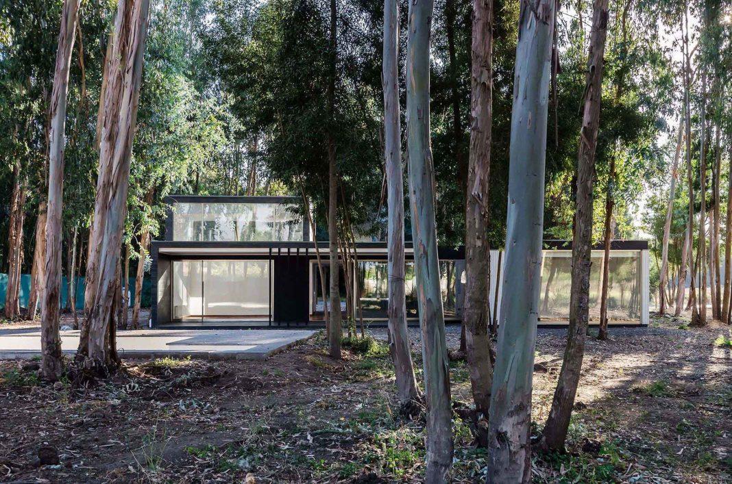 Casa 39 by Alex Plana