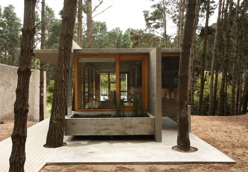 House-Among-Trees-03