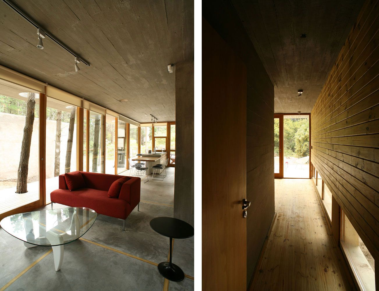 House-Among-Trees-23