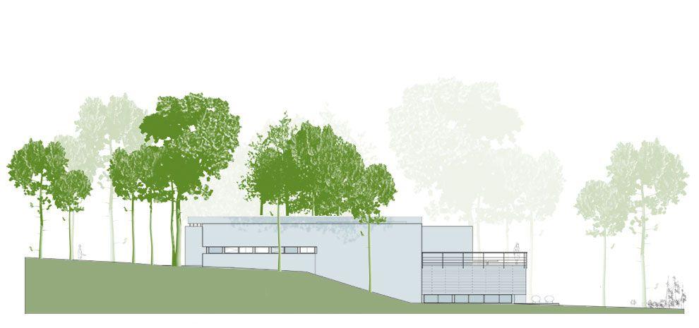 House-Among-Trees-33