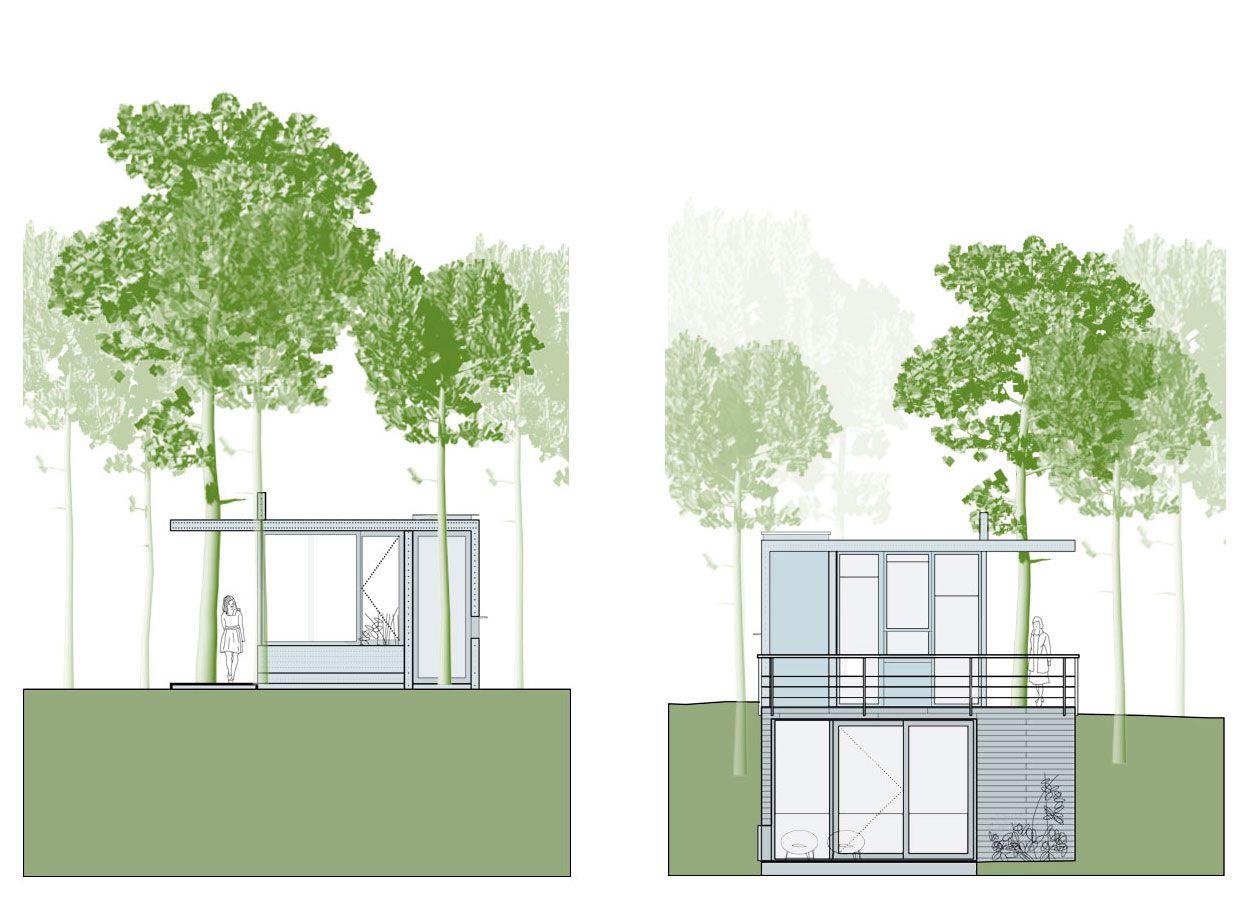 House-Among-Trees-34