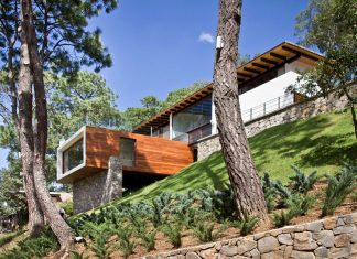 The Forest House by Espacio EMA