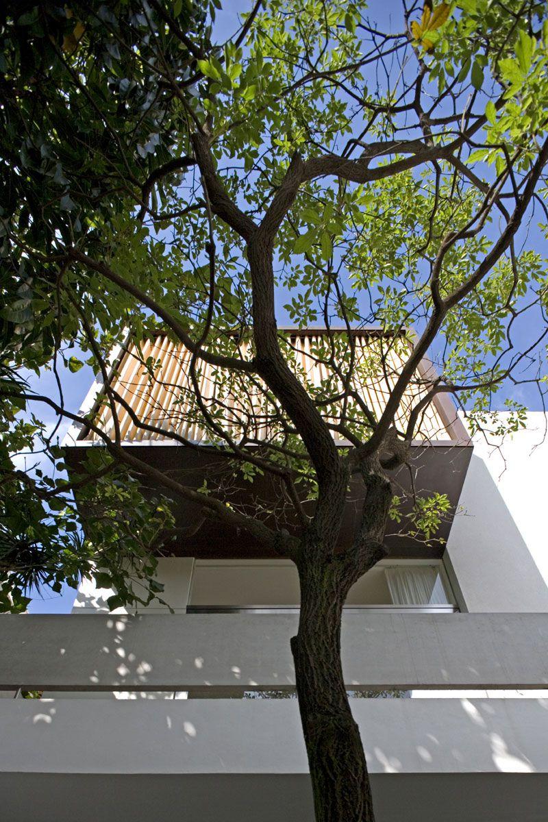 Vertical-House-02