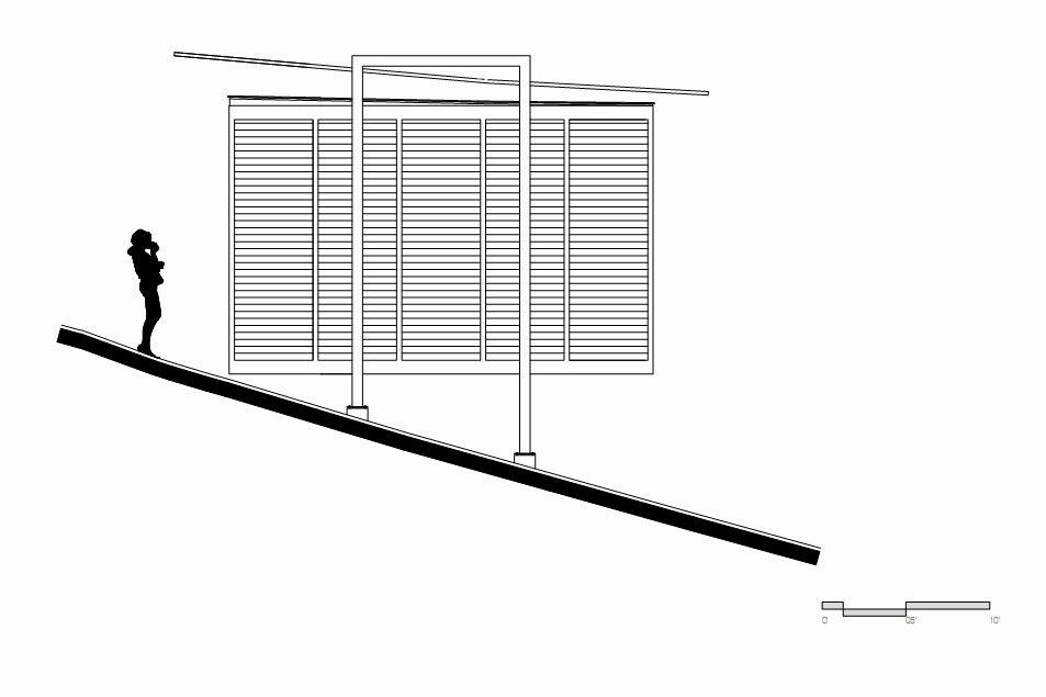 Endemico-Resguardo-Silvestre-36