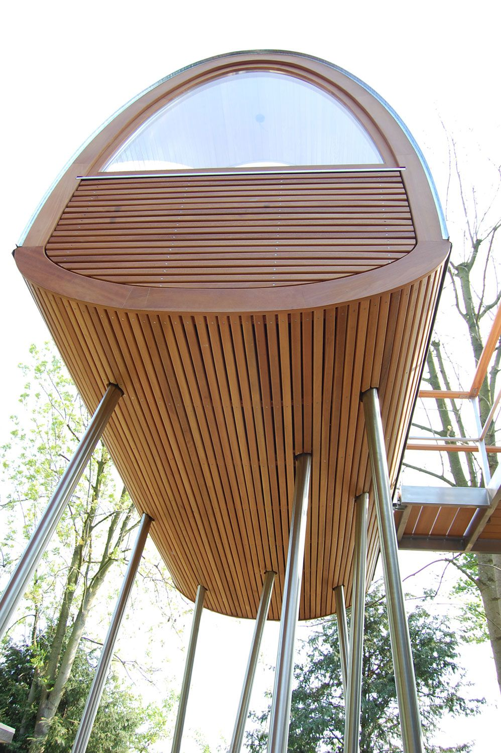 King-of-the-Frogs-Treehouse-8
