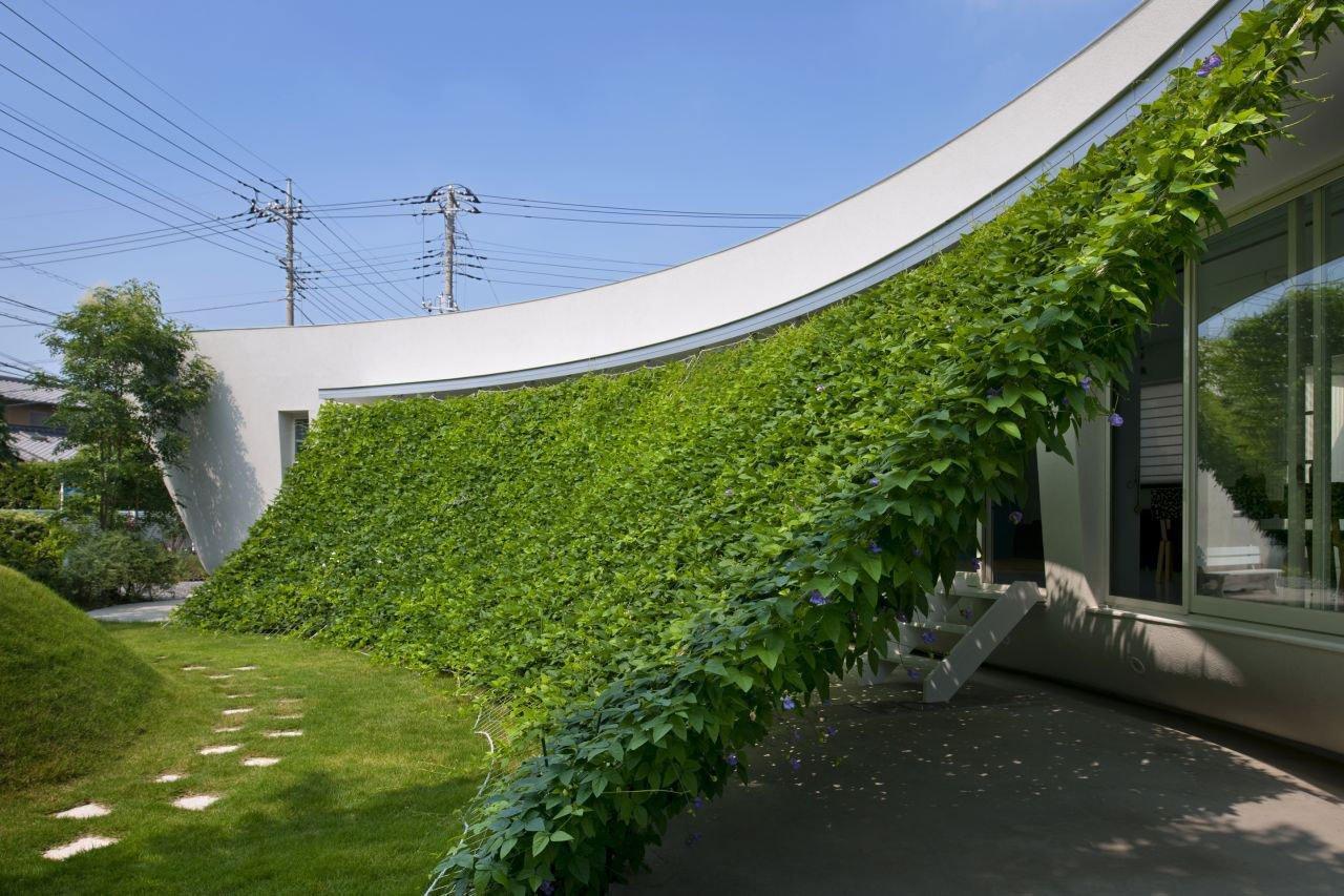 Green-Screen-House-06