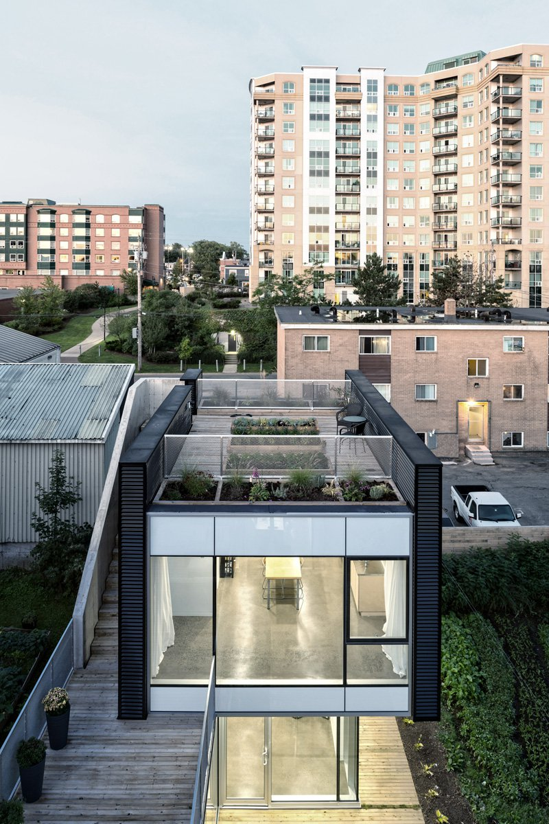 King Street by Susan Fitzgerald Architecture-06