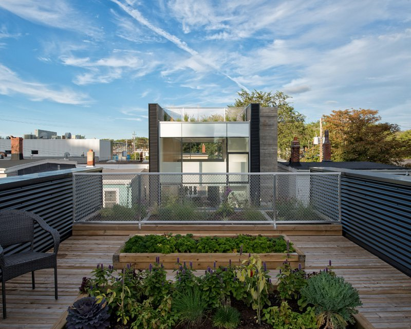 King Street by Susan Fitzgerald Architecture-18