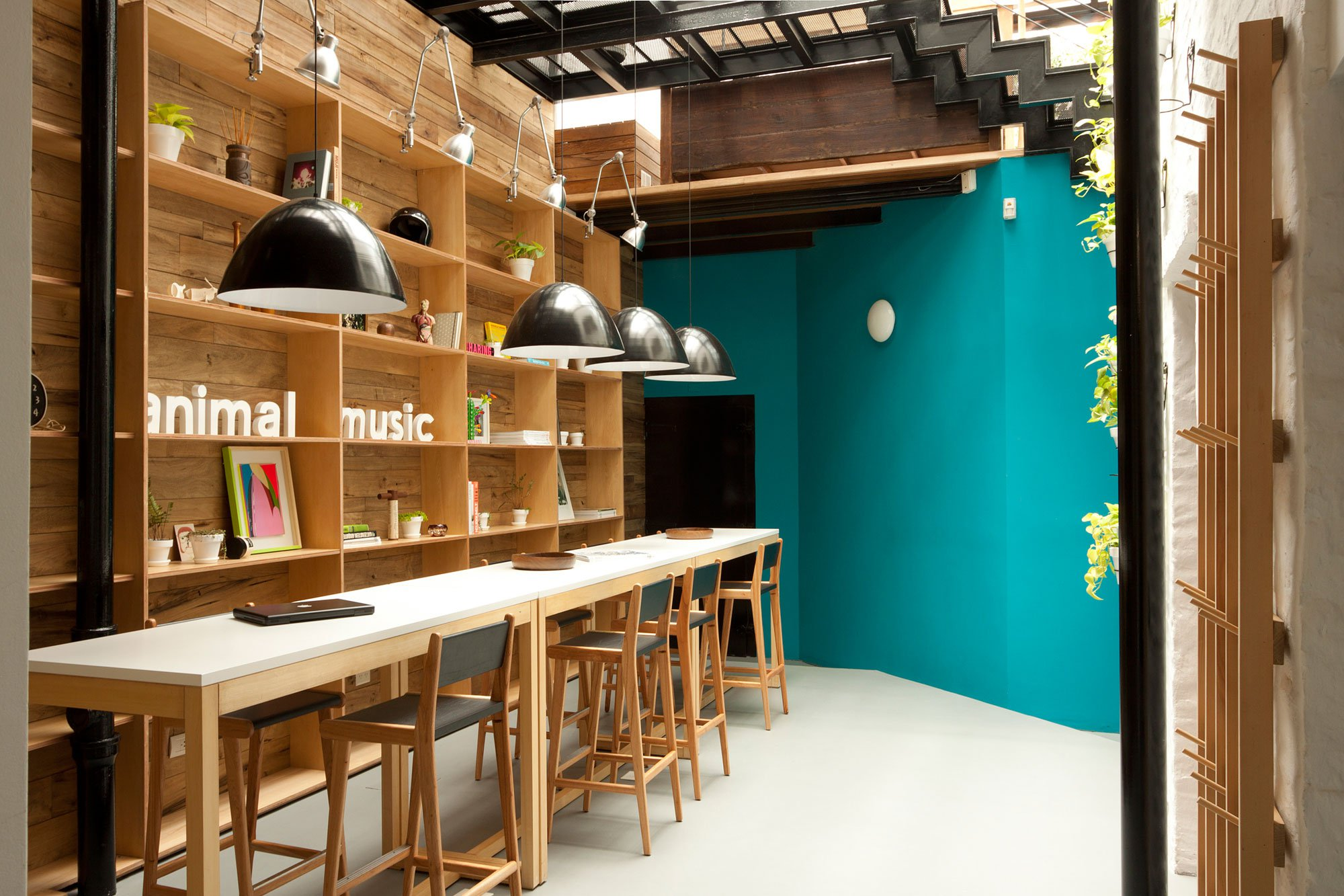 animal-music-04