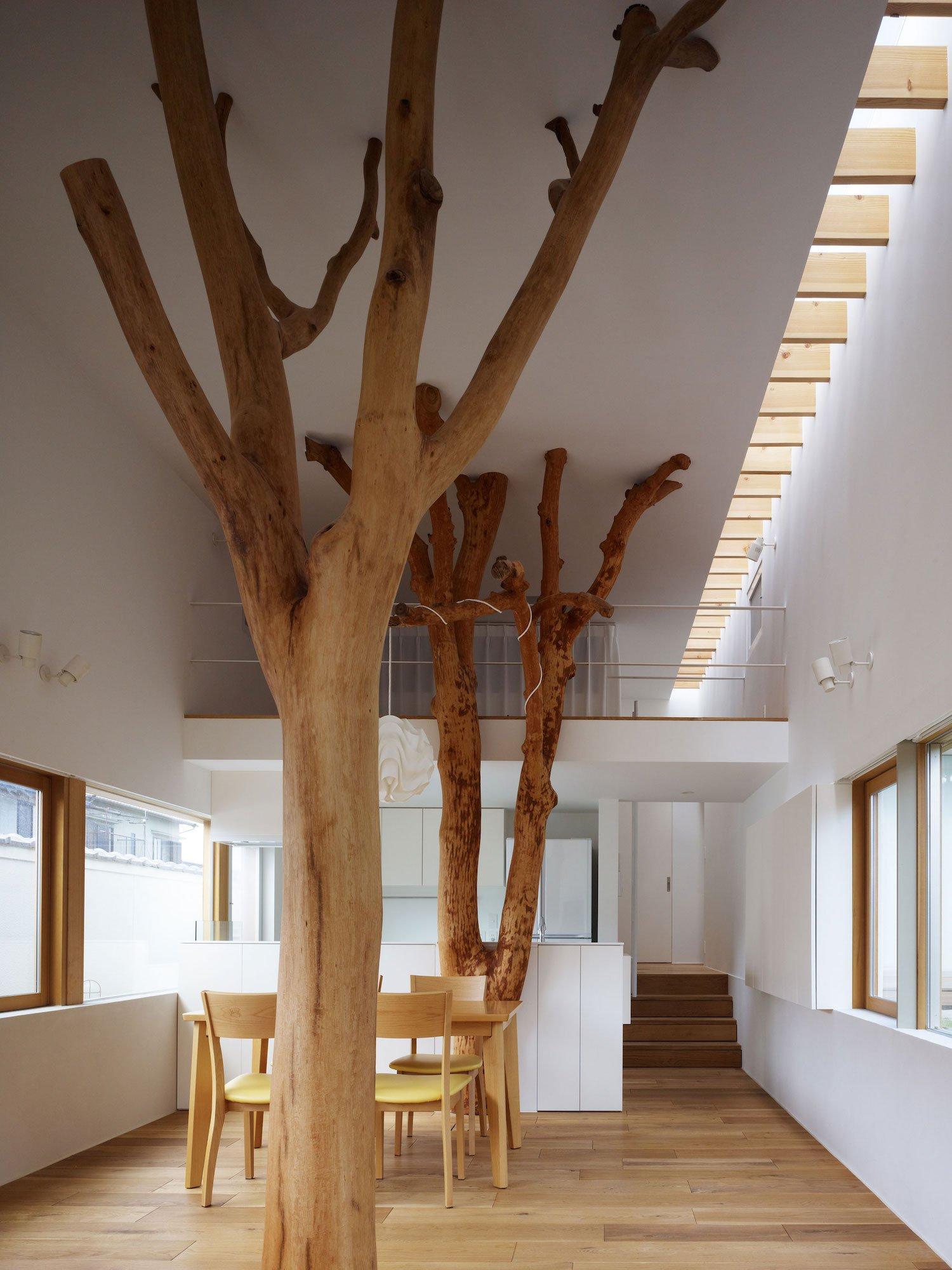 garden-tree-03