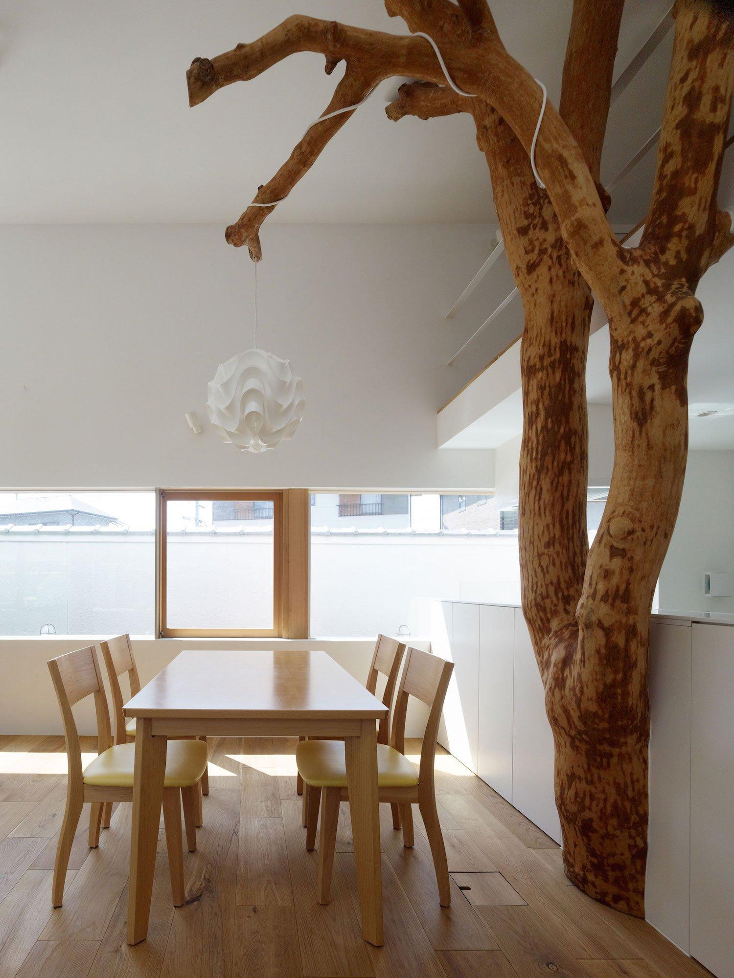 garden-tree-04