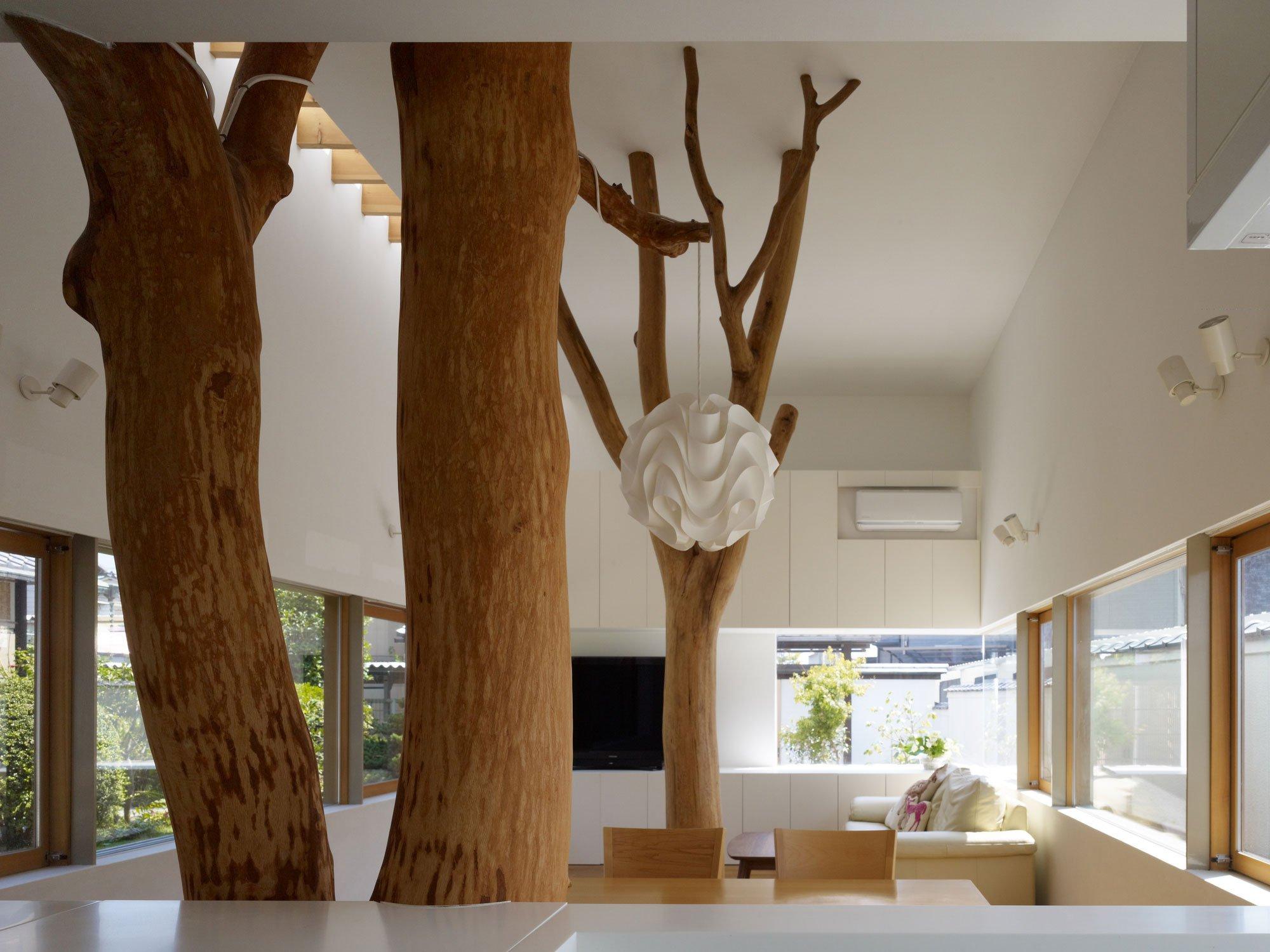 garden-tree-06