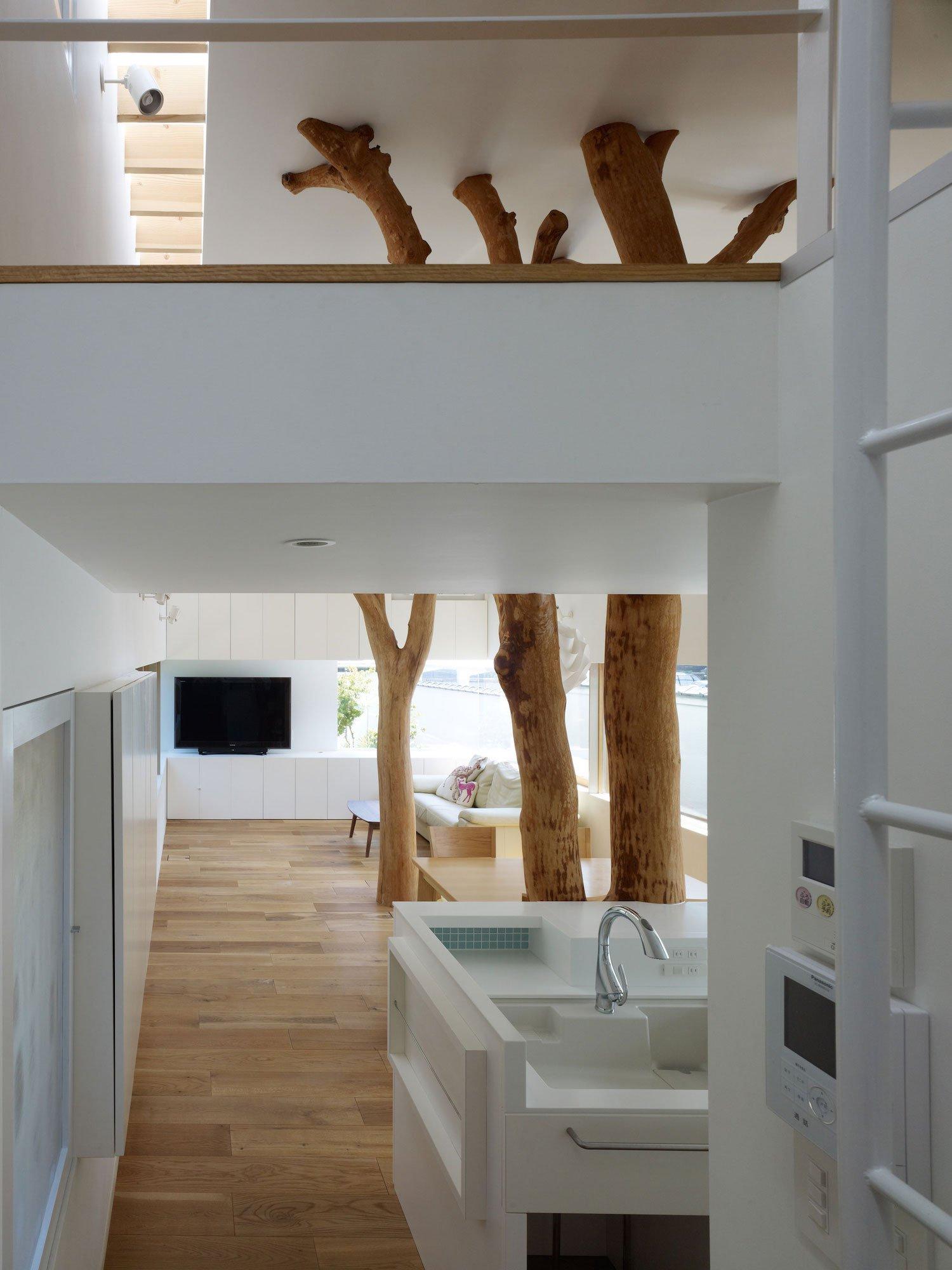 garden-tree-07