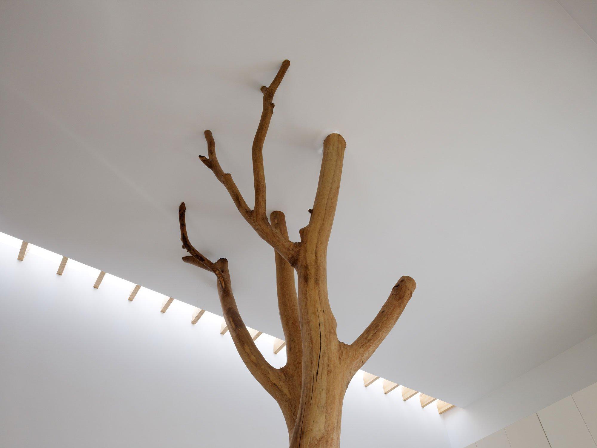 garden-tree-10