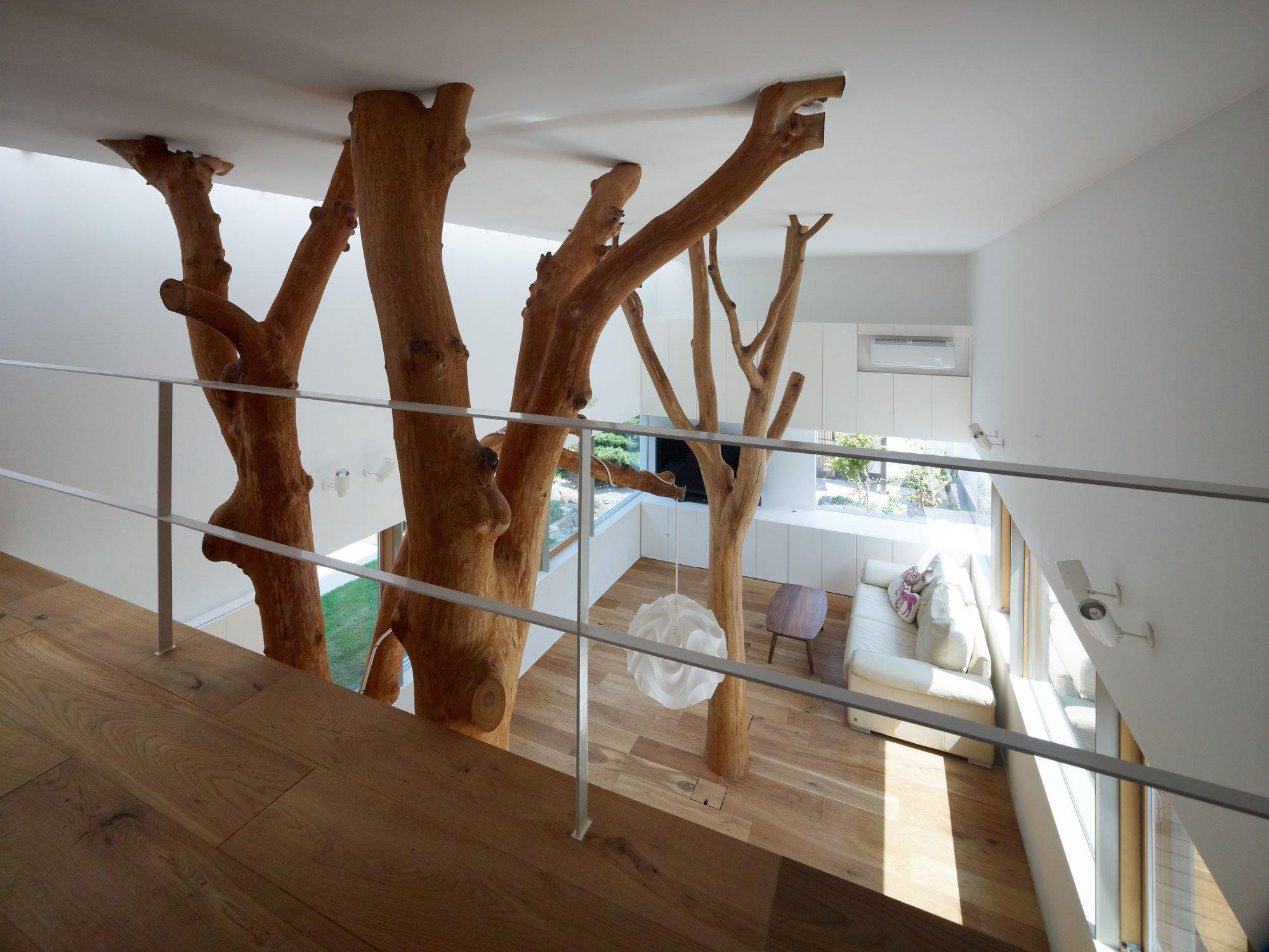 garden-tree-11