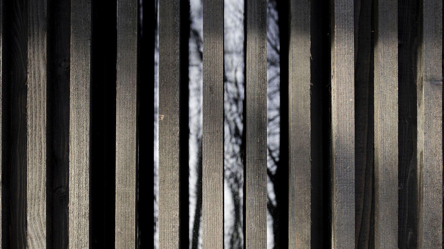 Huize-Looveld-06