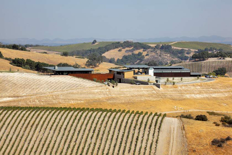 Law Winery by BAR Architects-15