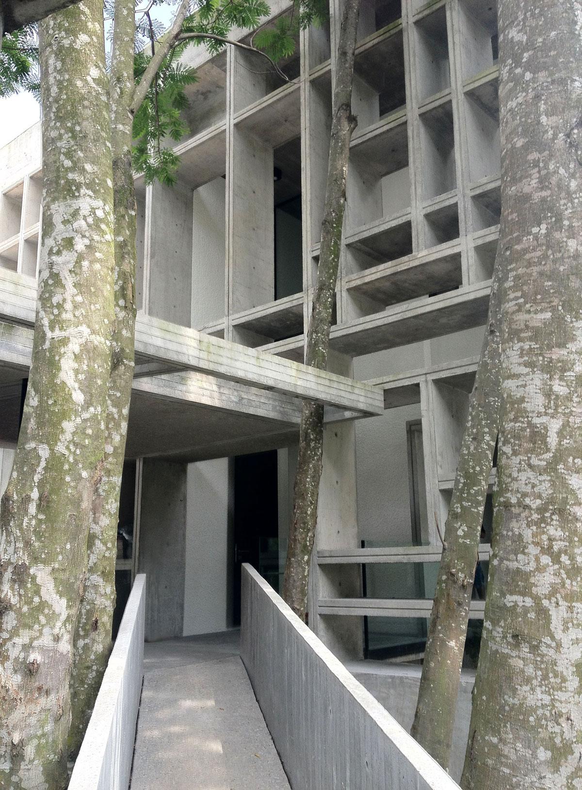 Tropical-Box-House-02