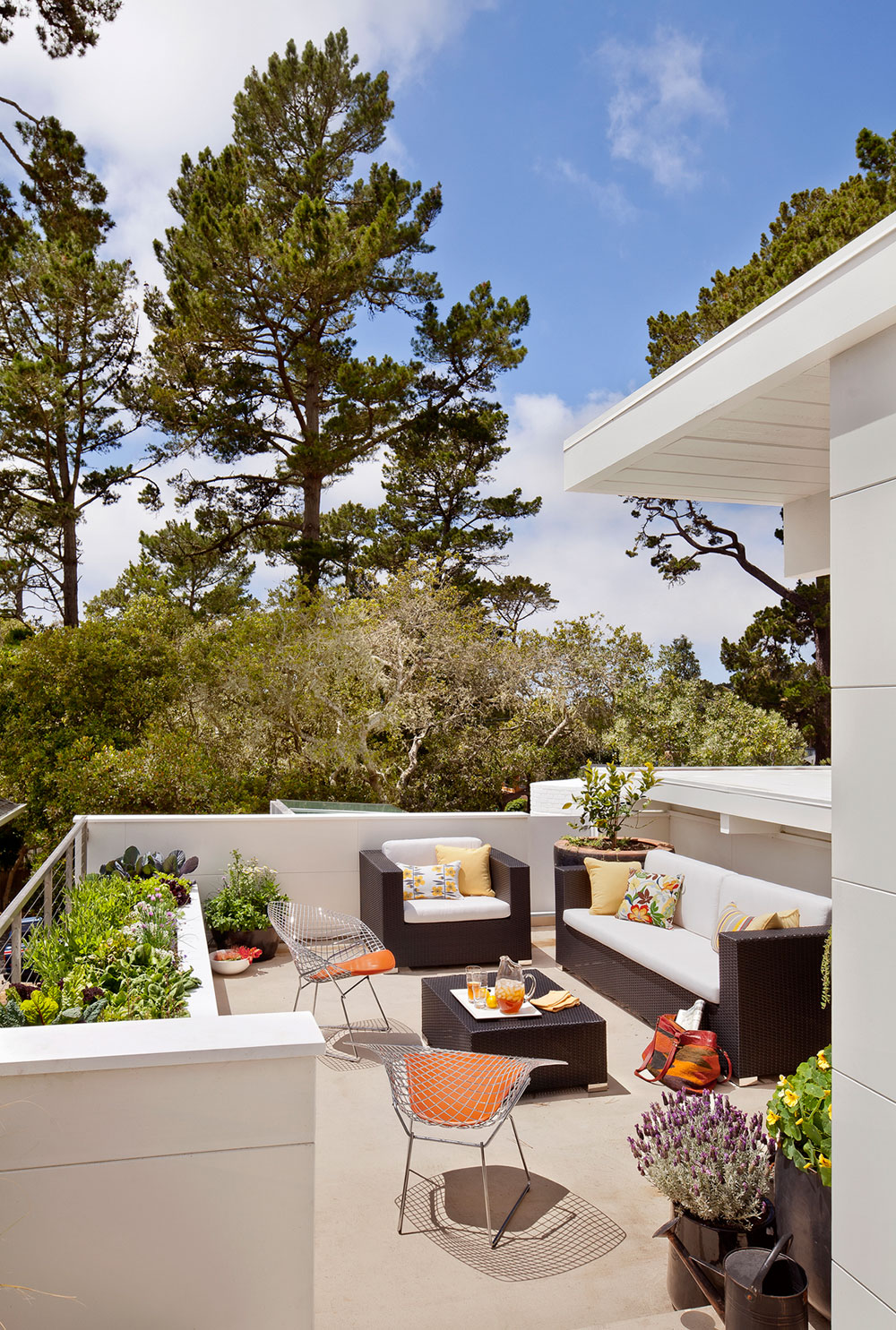Carmel Mid-Century LEED Home by Studio Schicketanz-05