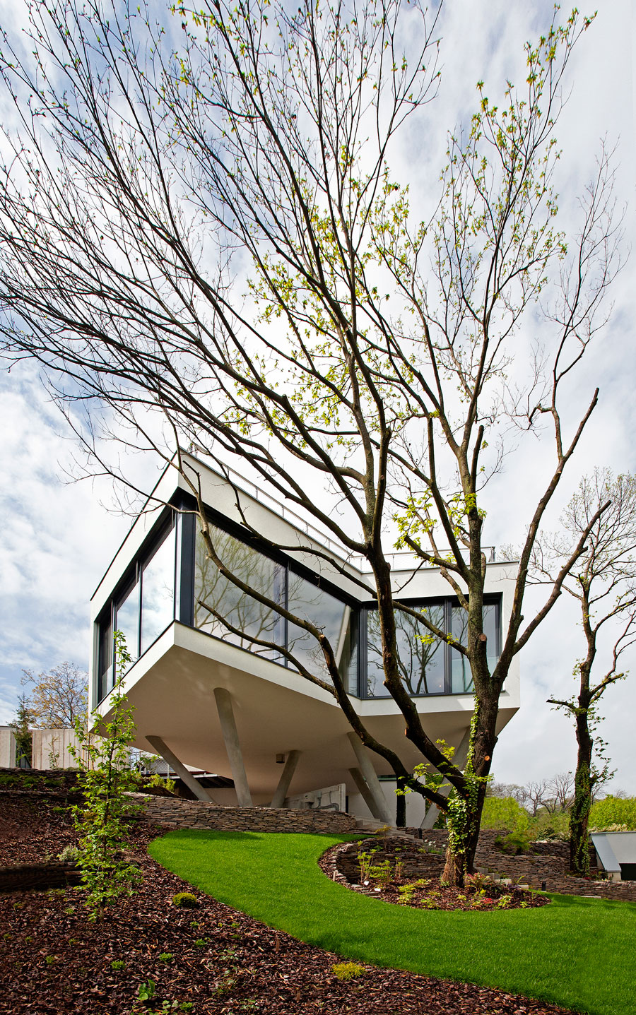 House Between The Trees Inspired From the Legendary Tugendhat Villa By Architekti Šebo Lichý-01