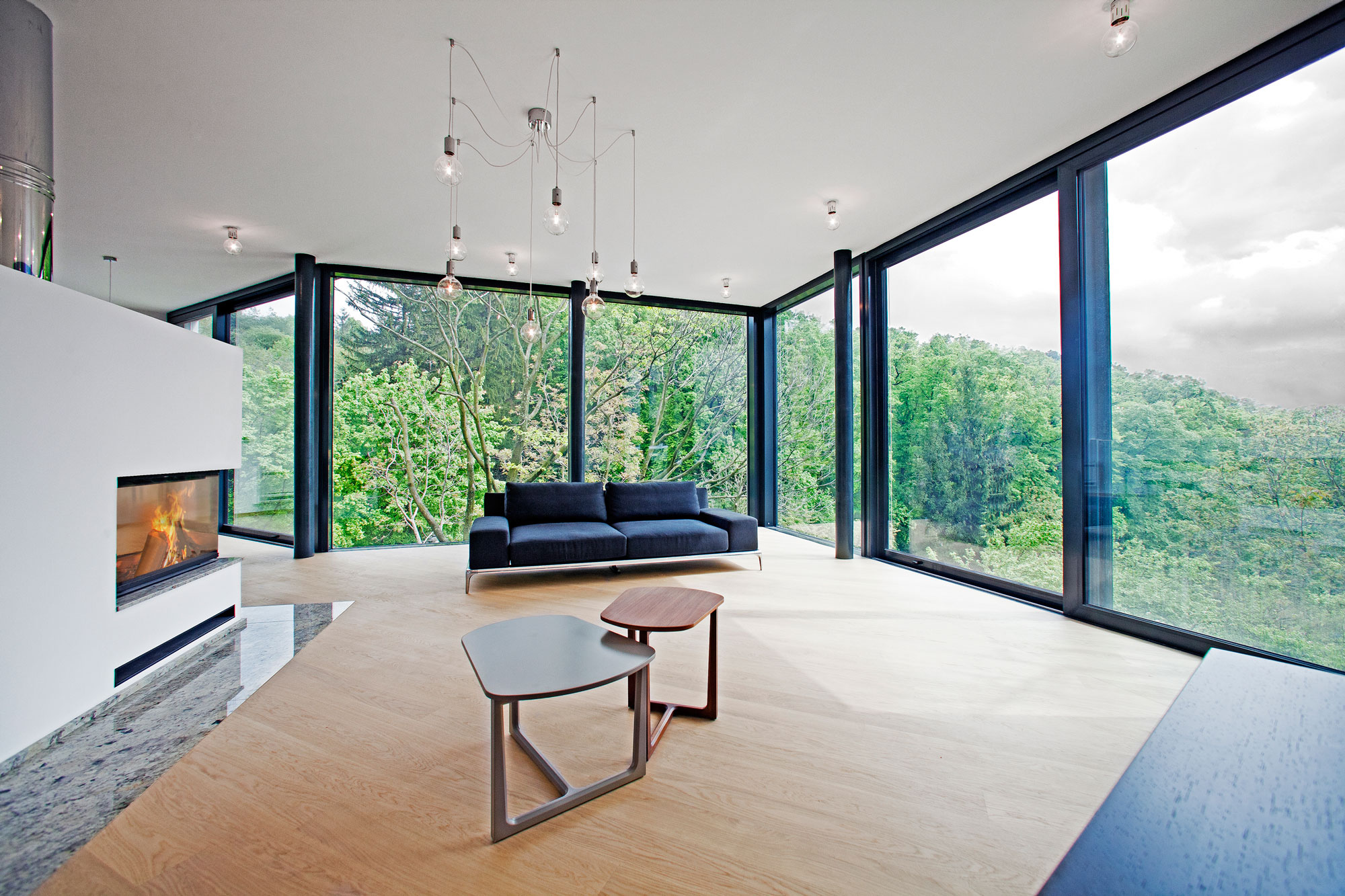 House Between The Trees Inspired From the Legendary Tugendhat Villa By Architekti Šebo Lichý-04