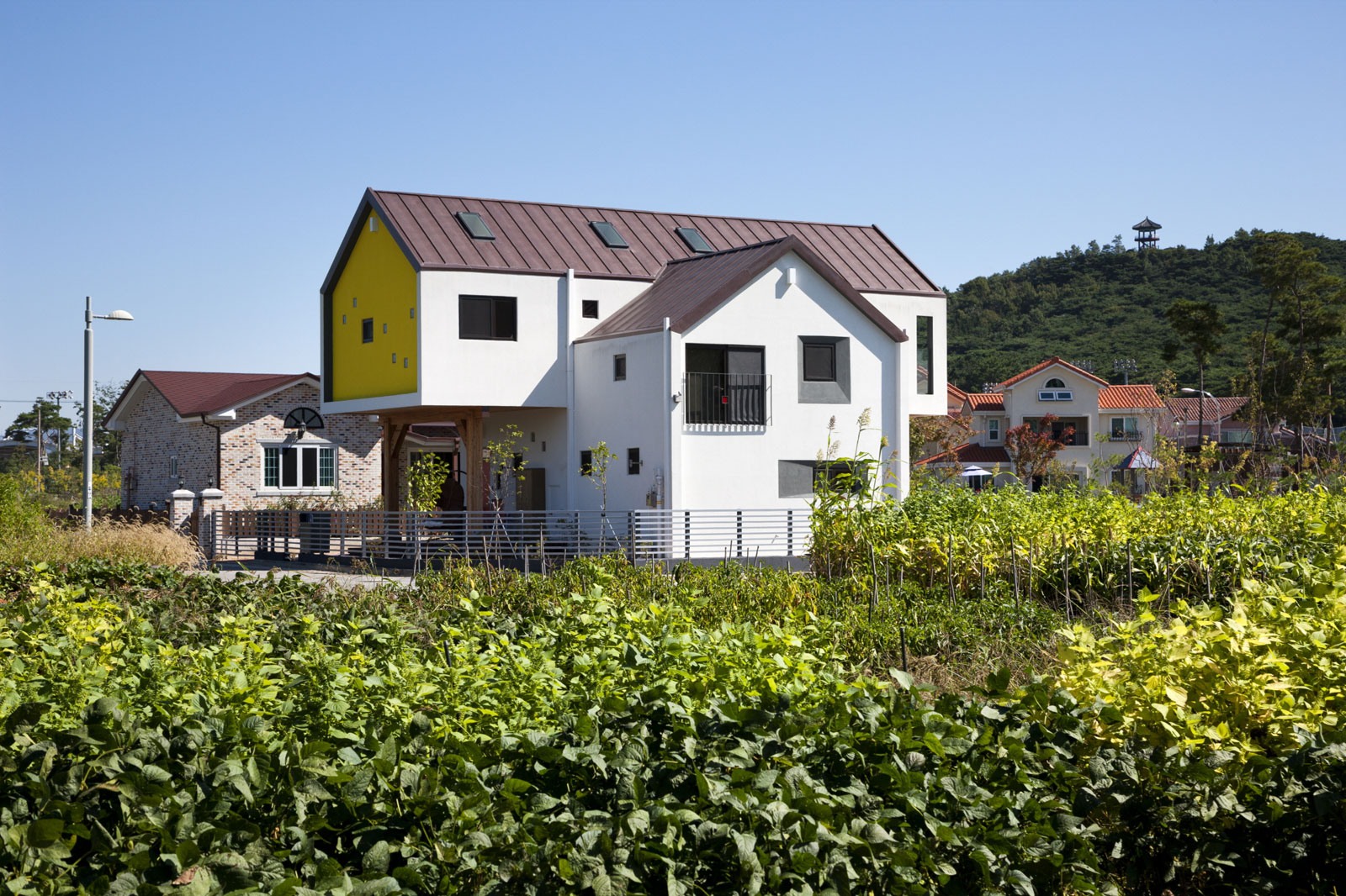 Iksan T Shaped House in South Korea by KDDH architects-01