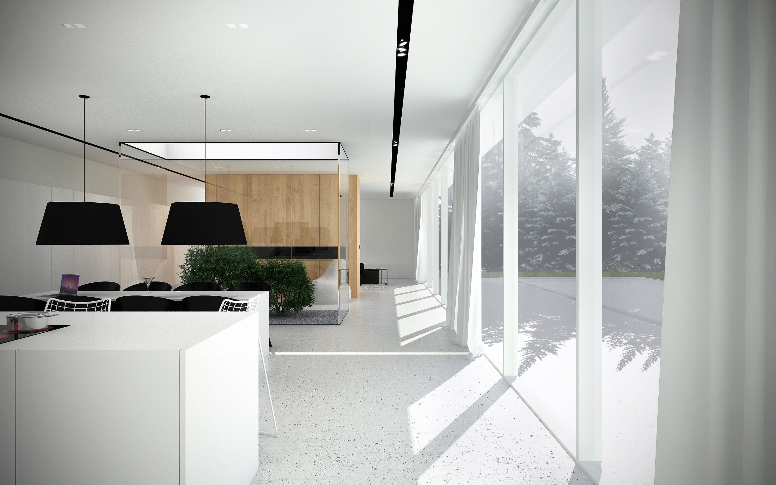 Minimalist shape with wooden verticals on the elevations of EHouse Project by Minimal Architects-06