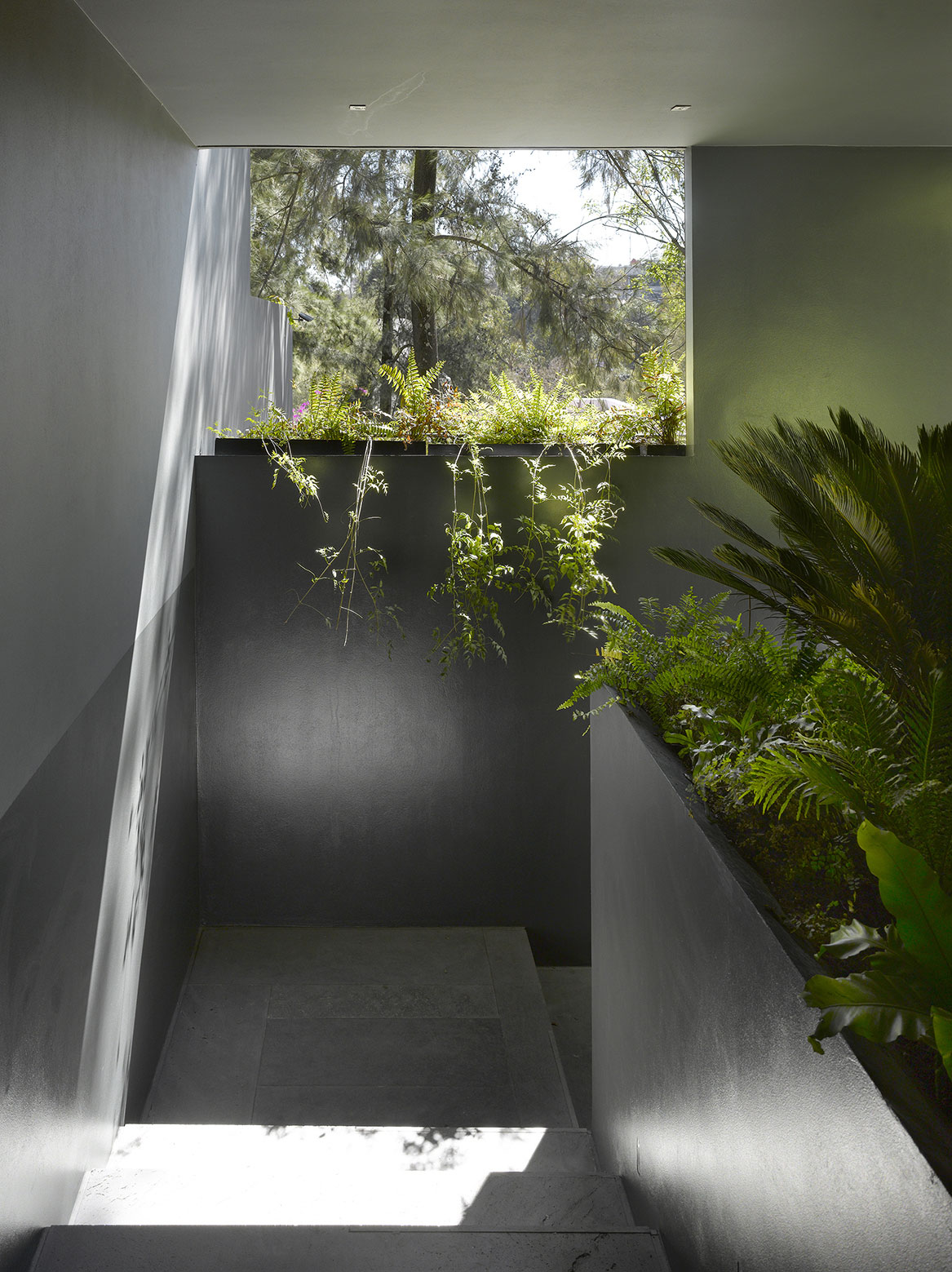 Modern Barrancas House in Mexico City by EZEQUIELFARCA architecture and design-14