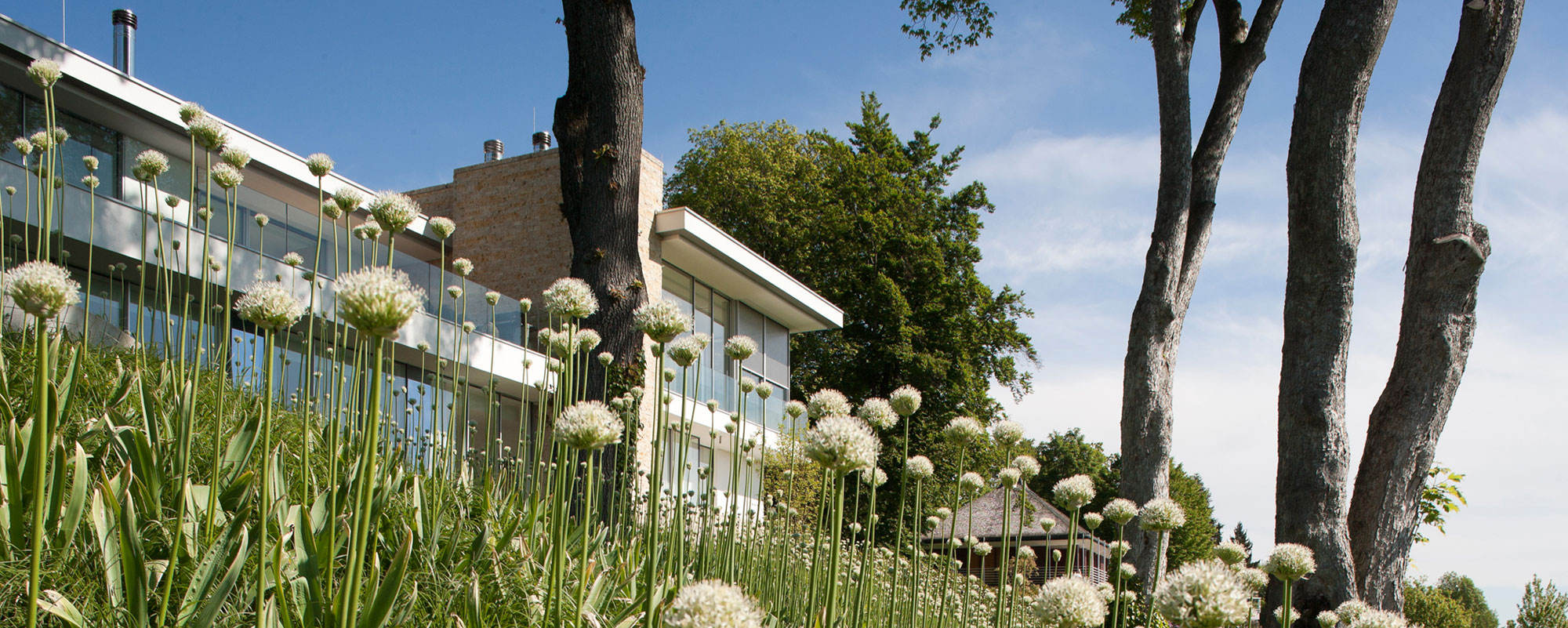 Modern S House near Munich by Stephan Maria Lang-01