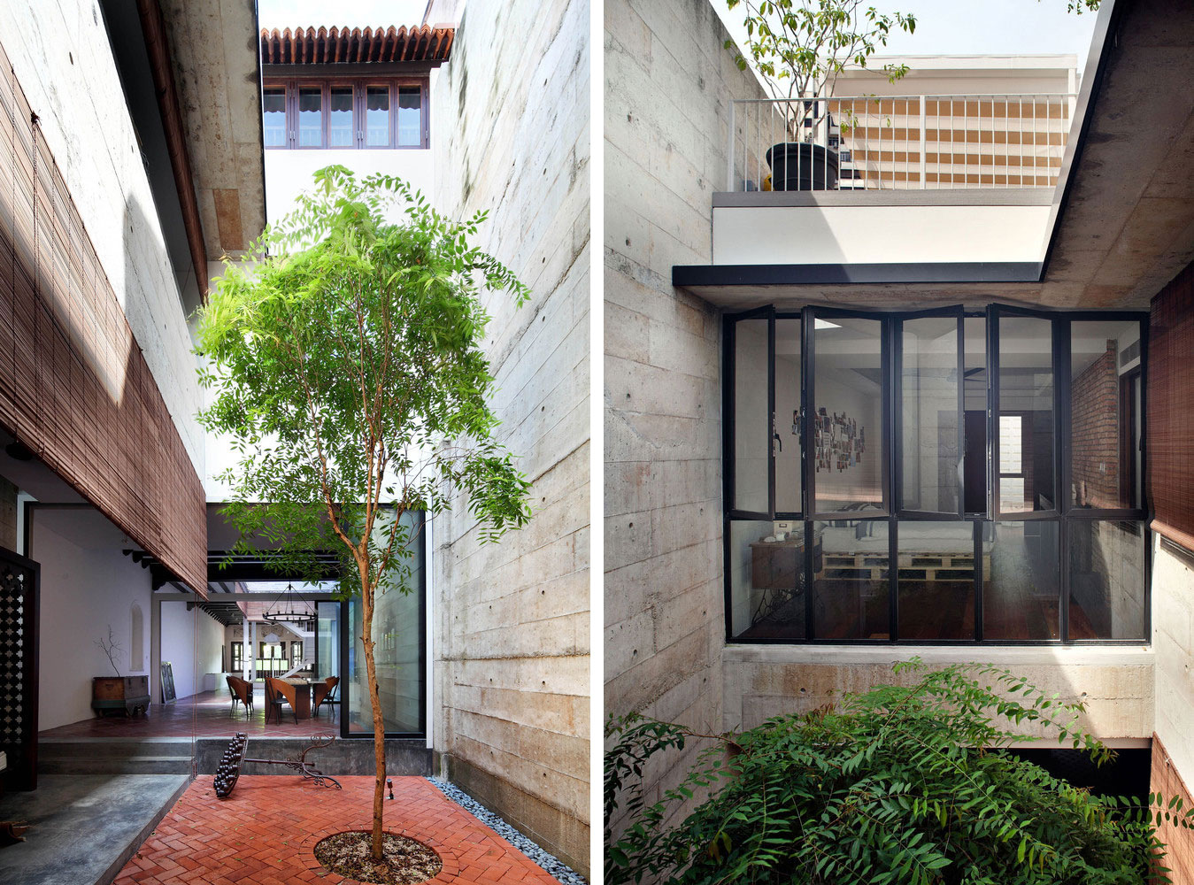 the tree inside the building