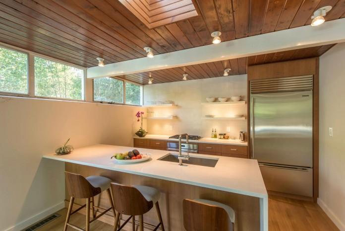 Chestnut-Hill-Modern-Renovation-by-Hammer-Architects-09