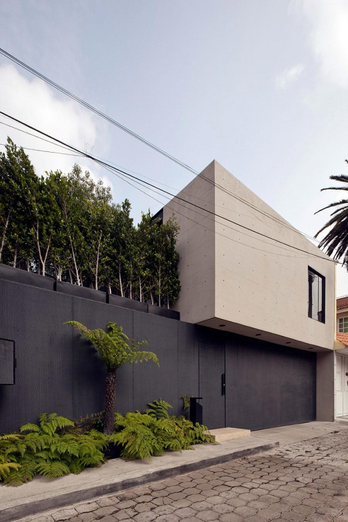 Hill-studio-home-designed-for-a-music-producer-and-artist-by-CCA-01