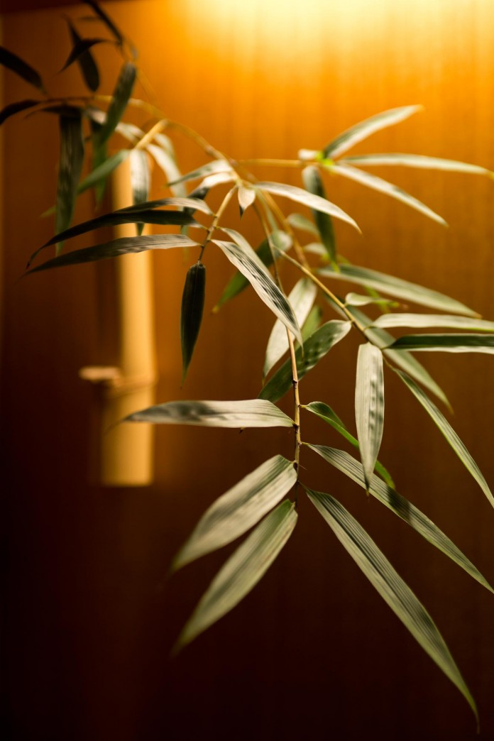 The-Eight-Bamboo-Villas-in-Nankun-Mountain-by-C-C-DESIGN-07
