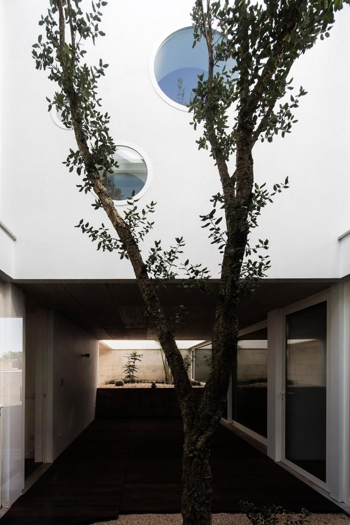 Casa-dos-Claros-family-home-with-two-stories-by-Contaminar-Arquitectos-03