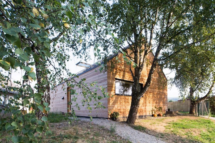DomT-Wooden-Home-by-Martin-Boles-Architect-02