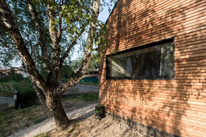 DomT-Wooden-Home-by-Martin-Boles-Architect-04