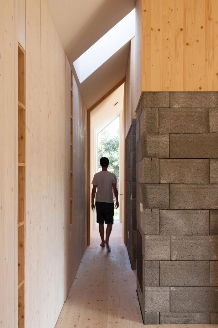 DomT-Wooden-Home-by-Martin-Boles-Architect-06