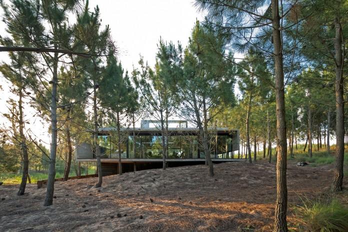 luciano-kruk-design-l4-house-located-pine-forest-near-sea-01