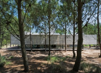 Luciano Kruk design the L4 House located in a pine forest near the sea