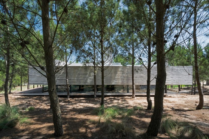 luciano-kruk-design-l4-house-located-pine-forest-near-sea-02