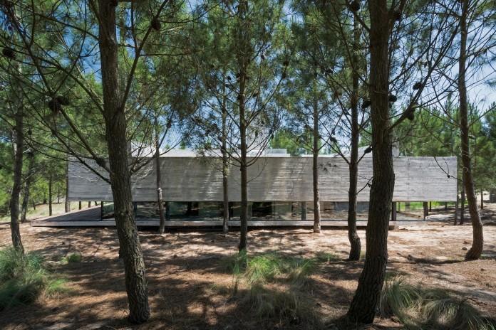 luciano-kruk-design-l4-house-located-pine-forest-near-sea-02