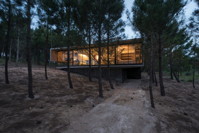 luciano-kruk-design-l4-house-located-pine-forest-near-sea-06