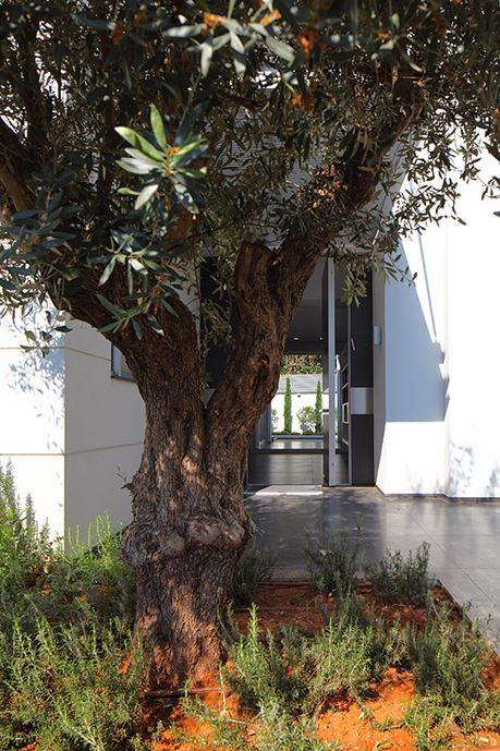 modern-house-raanana-israel-come-back-bmarc-03