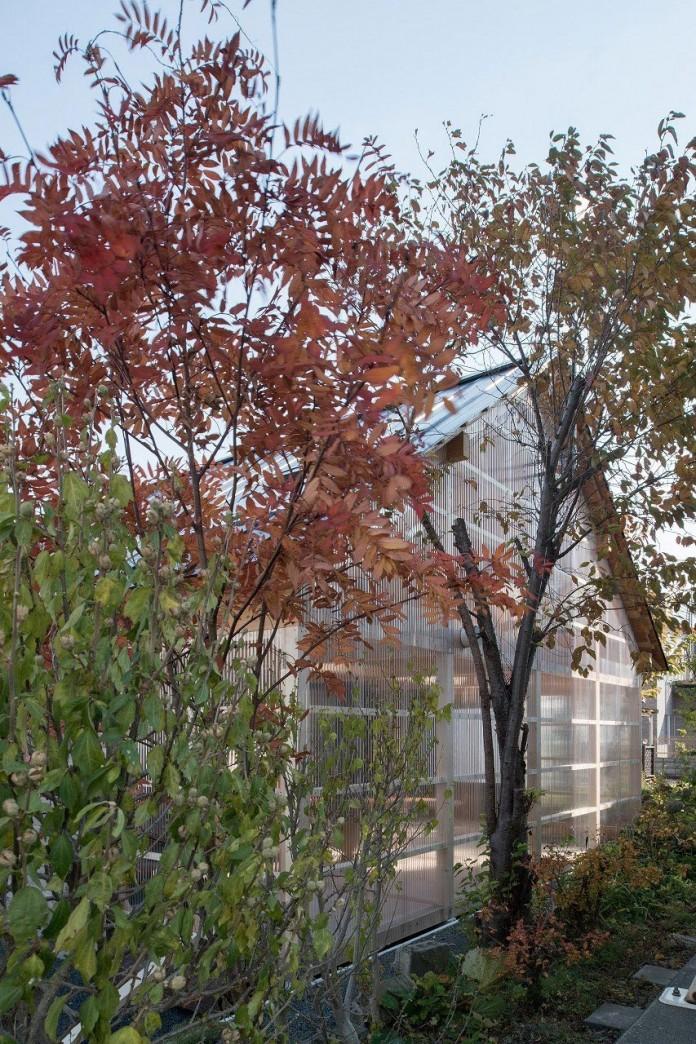 wooden-house-shinkawa-sapporo-yoshichika-takagi-01