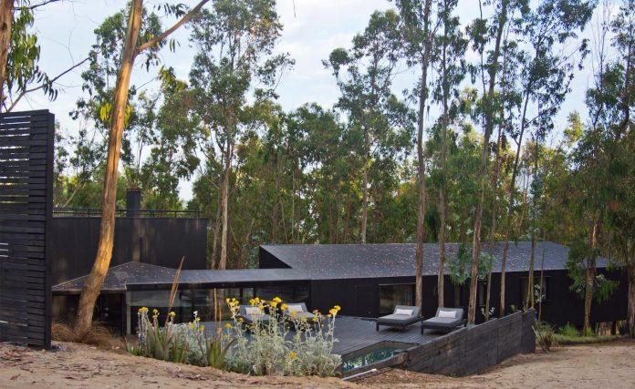 alfredo-comandari-design-aguas-claras-house-located-midst-eucalyptus-forestp-02