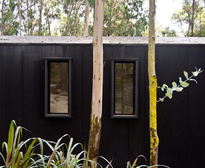 alfredo-comandari-design-aguas-claras-house-located-midst-eucalyptus-forestp-07