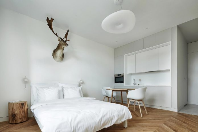 blackhaus-design-tiny-daniel-apartment-near-historic-centre-krakow-krakow-poland-01